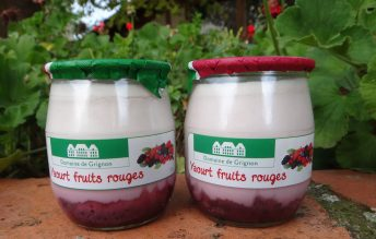 Yaourt bicouche fruits rouges