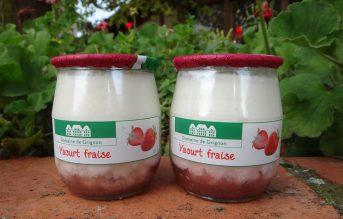 Yaourt bicouche fraise