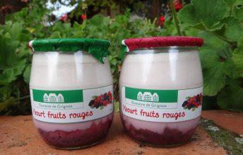 Yaourt bicouche fruits rouges