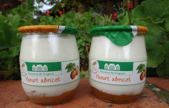 Yaourt bicouche abricot